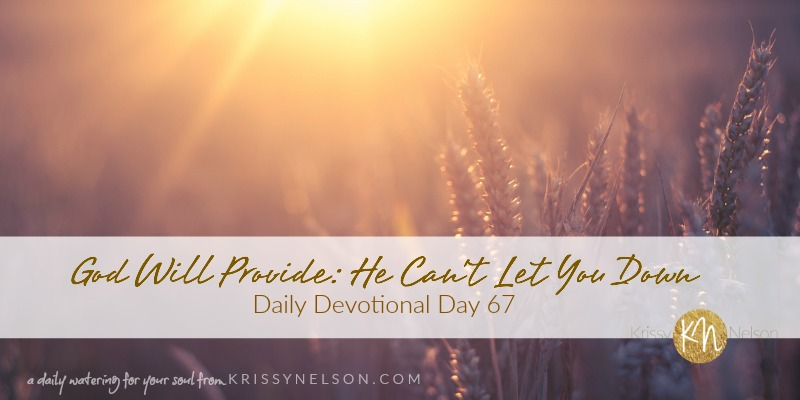 God Will Provide: He Can't Let You Down